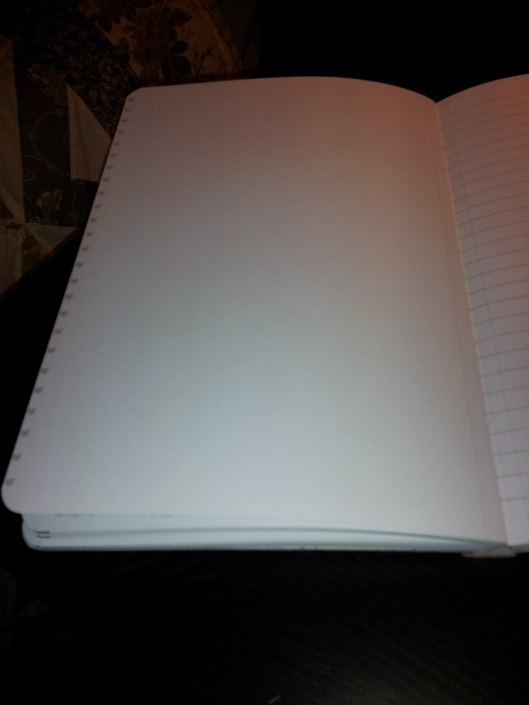 blank left page