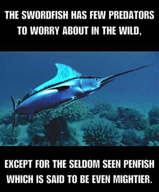 penfish